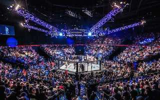 cage de l'ufc MMA